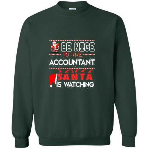 Be nice to the accountant Santa is watching sweater, shirt - image 636 500x500